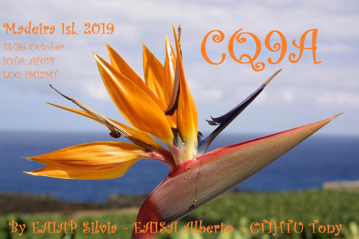 Primary Image for CQ9A