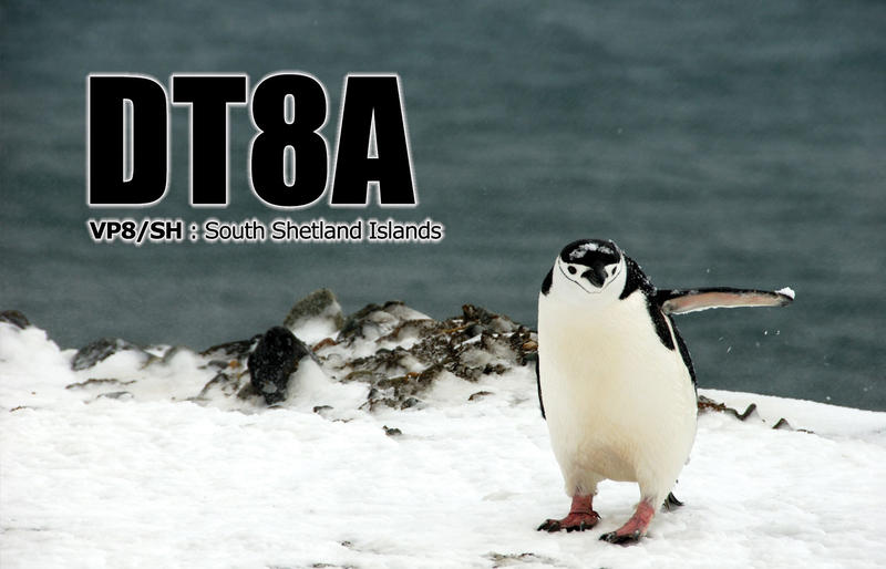 Primary Image for DT8A