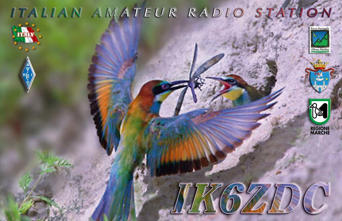 Primary Image for IK6ZDC