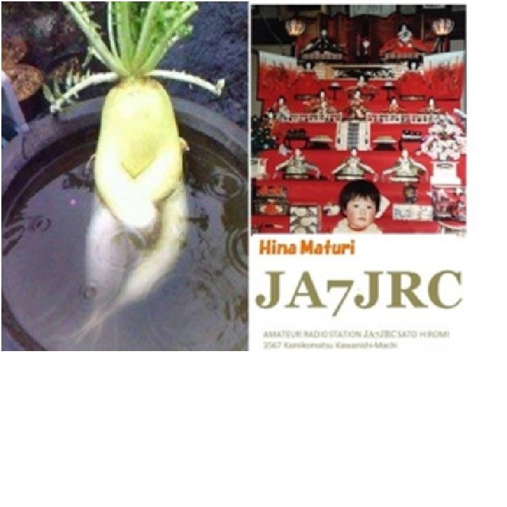 Primary Image for JA7JRC
