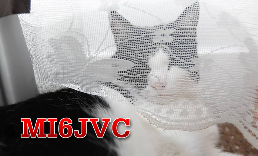 Primary Image for MI6JVC