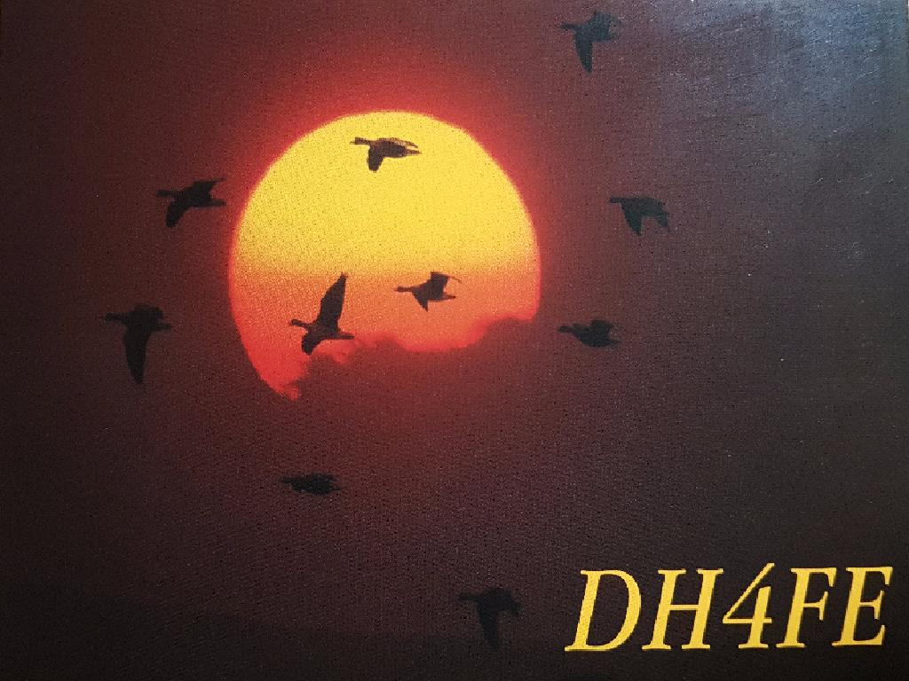 Primary Image for DH4FE