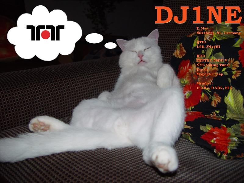 Primary Image for DJ1NE