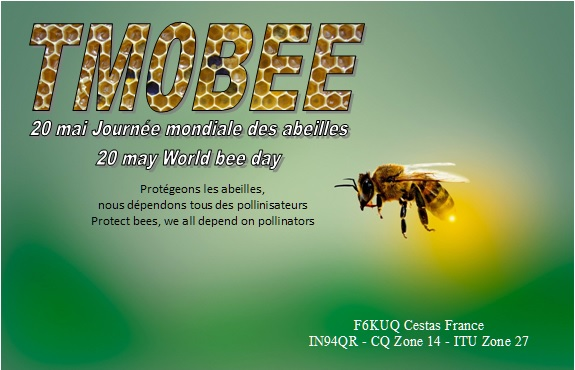 Primary Image for TM0BEE