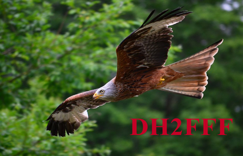 Primary Image for DH2FFF