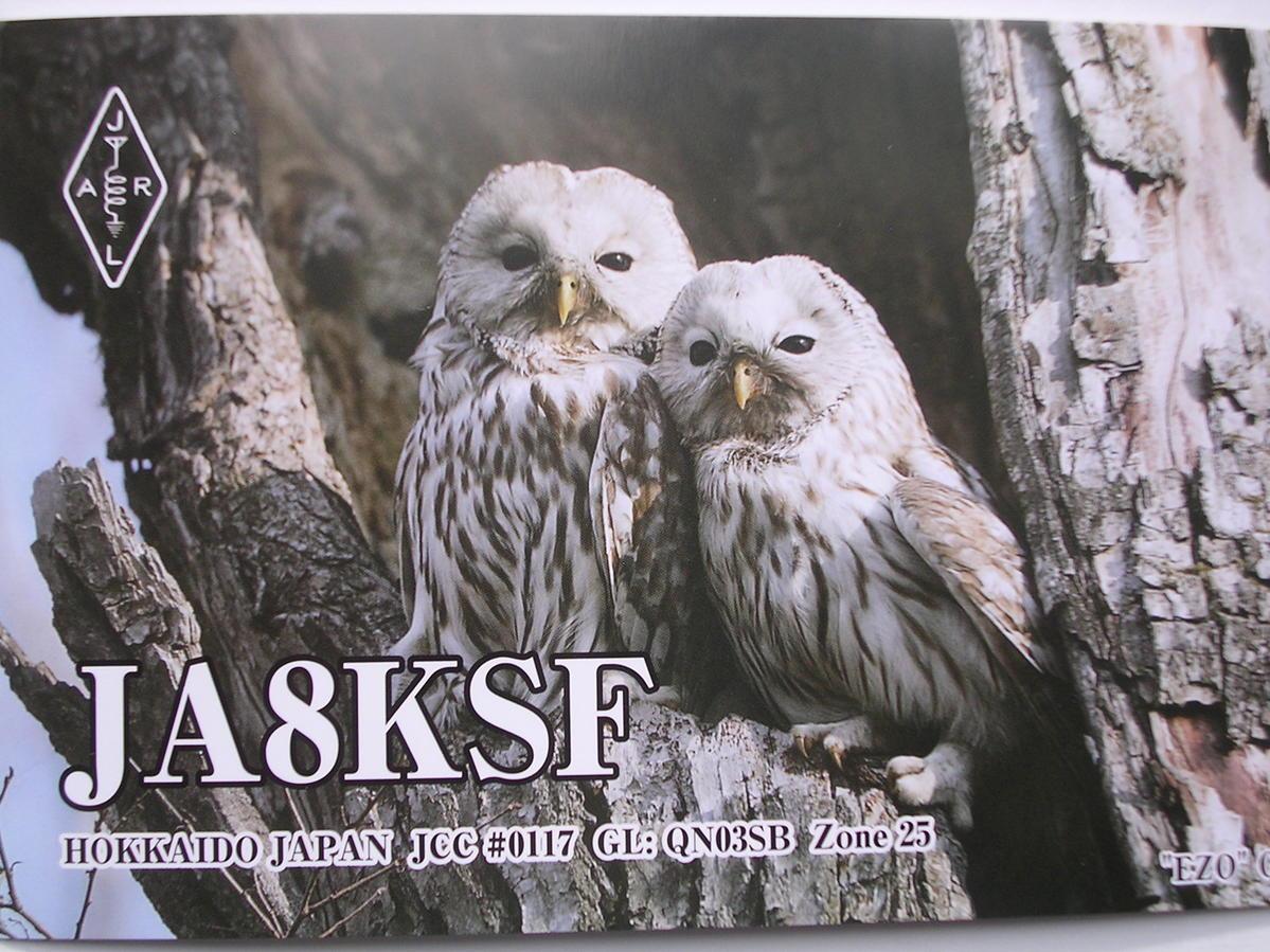 Primary Image for JA8KSF