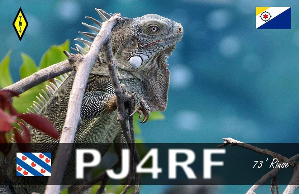 Primary Image for PJ4RF