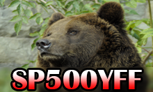 Primary Image for SP500YFF