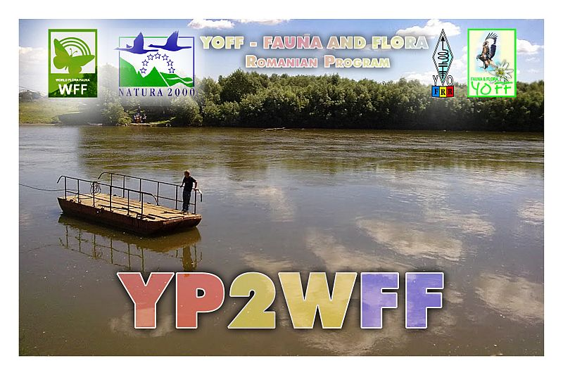 Primary Image for YP2WFF