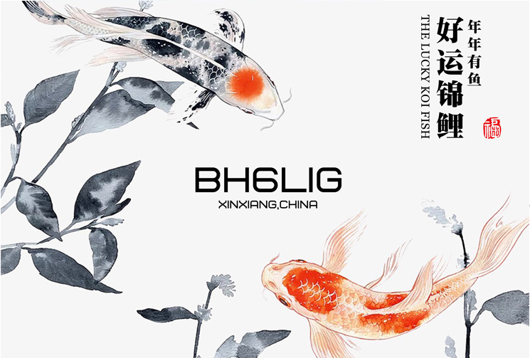 Primary Image for BH6LIG