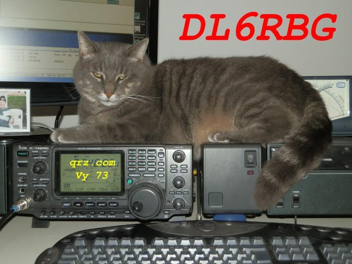 Primary Image for DL6RBG