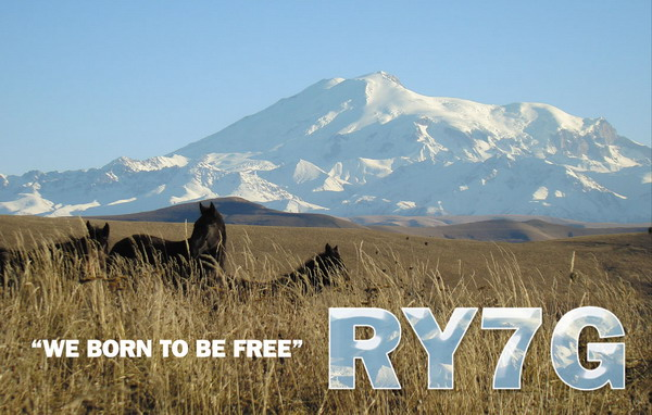 Primary Image for RY7G