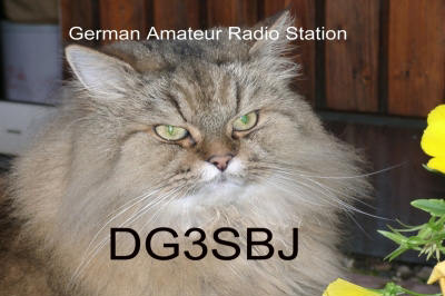 Primary Image for DG3SBJ