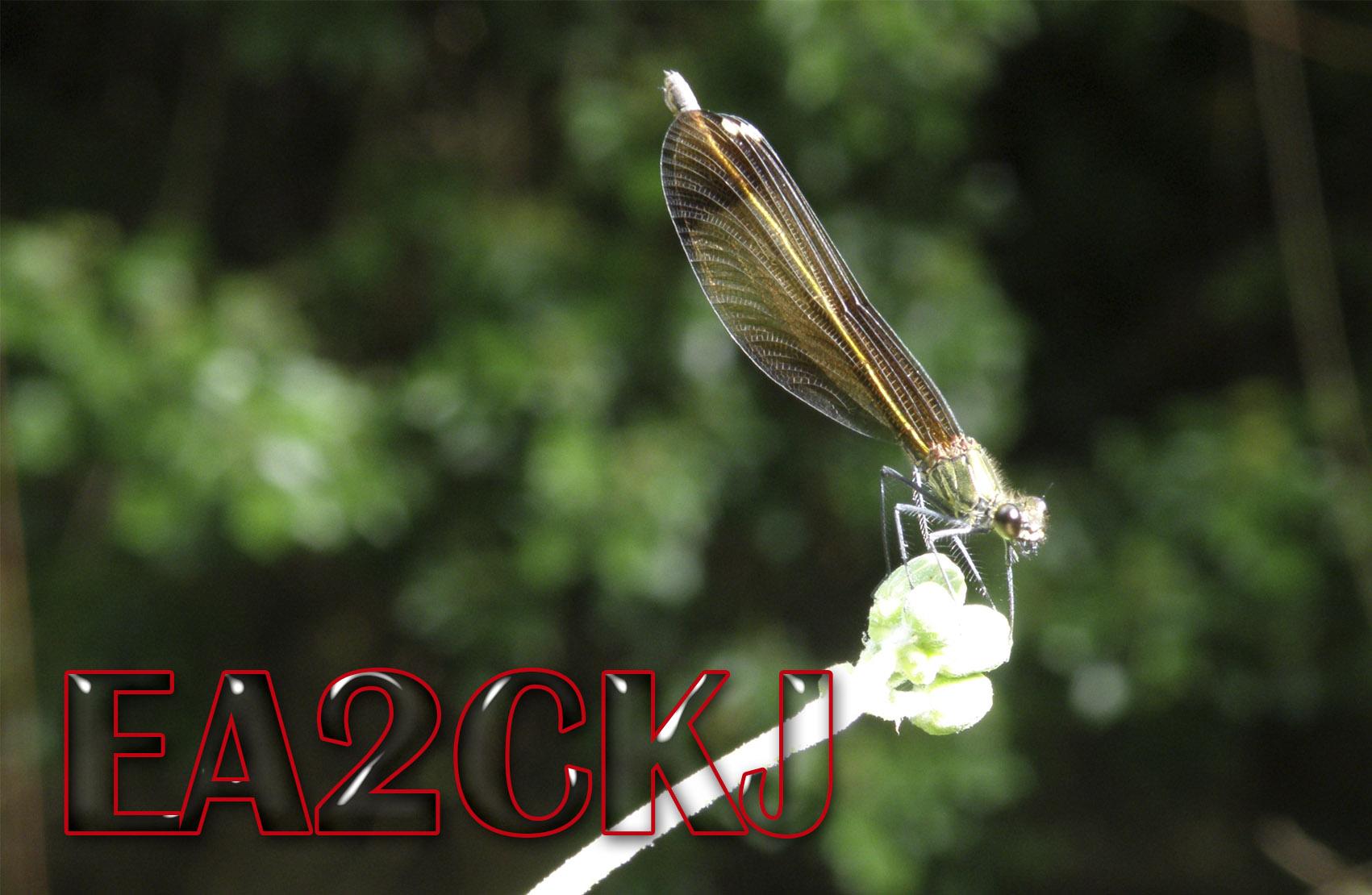 Primary Image for EA2CKJ