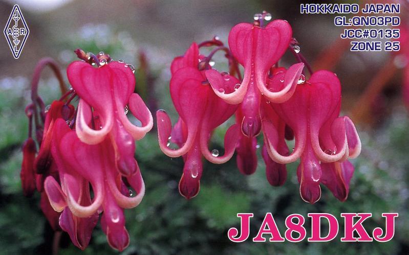 Primary Image for JA8DKJ