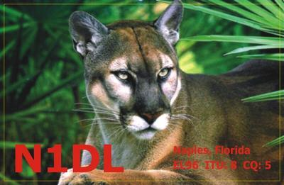 Primary Image for N1DL