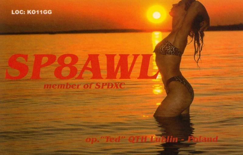 Primary Image for SP8AWL