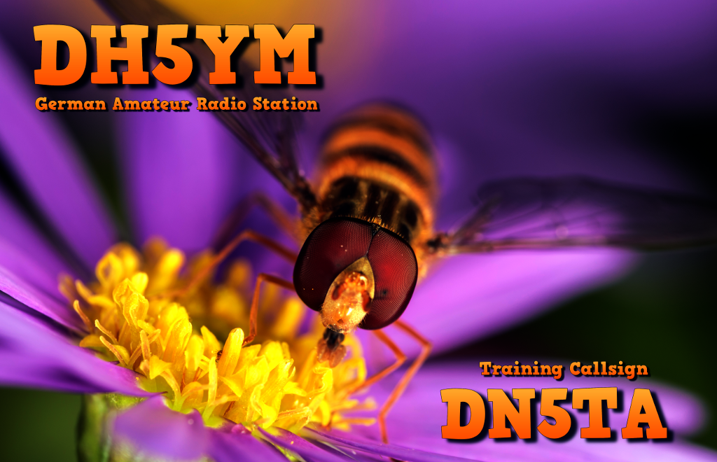 Primary Image for DH5YM