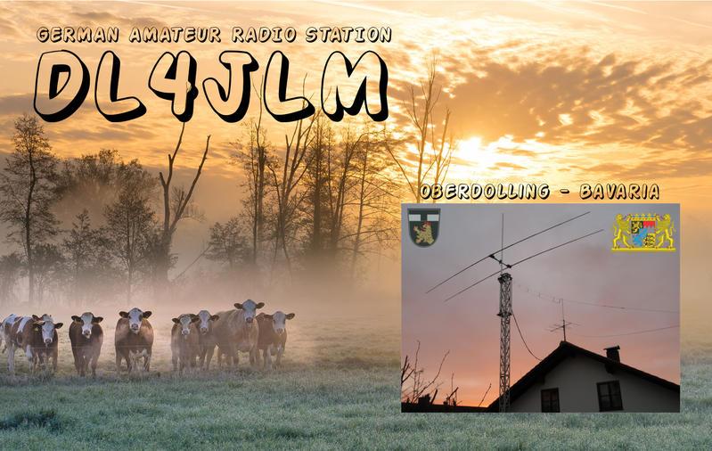 Primary Image for DL4JLM