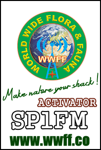 Primary Image for SP1FM