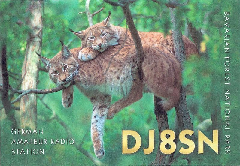 Primary Image for DJ8SN