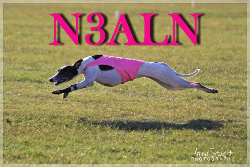 Primary Image for N3ALN