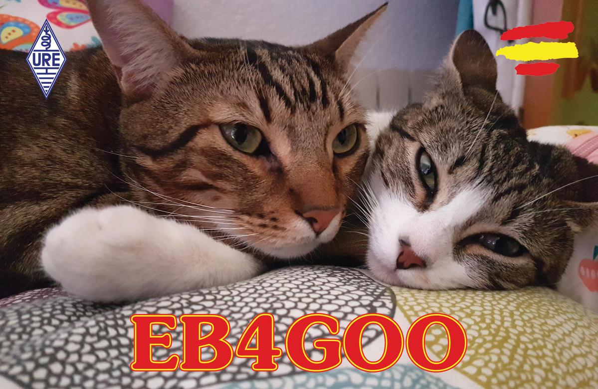 Primary Image for EB4GOO