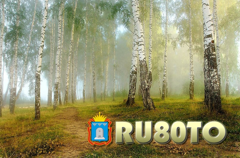 Primary Image for RU80TO