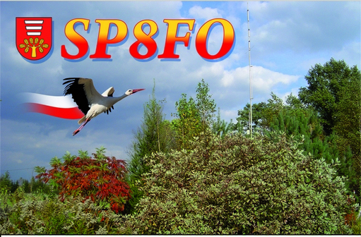 Primary Image for SP8FO