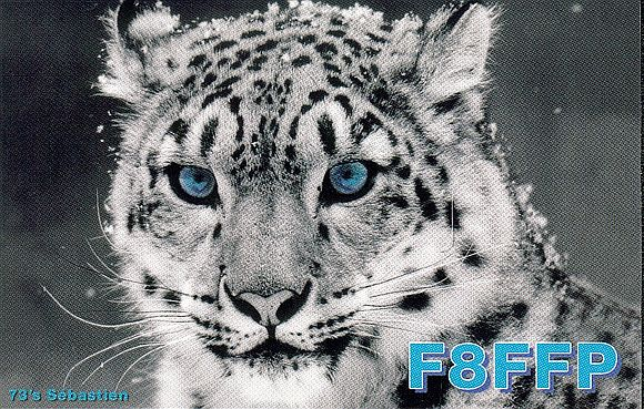 Primary Image for F8FFP