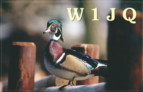 Primary Image for W1JQ
