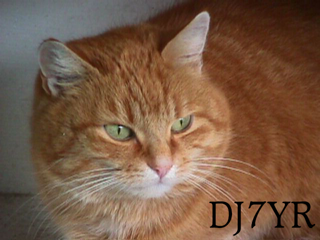 Primary Image for DJ7YR