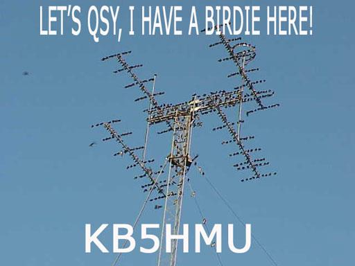 Primary Image for KB5HMU