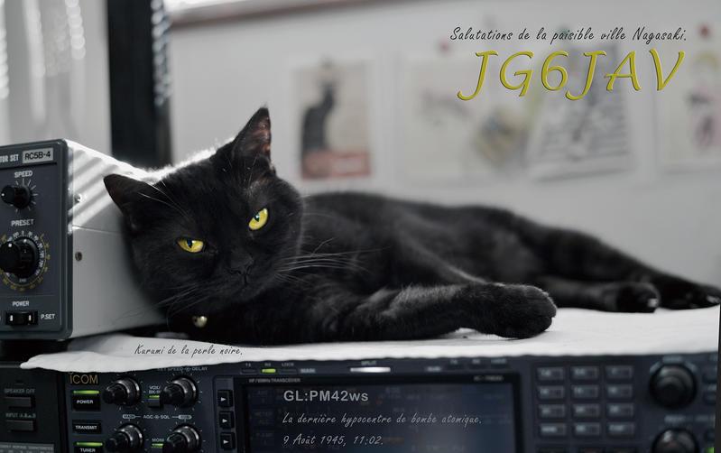 Primary Image for JG6JAV