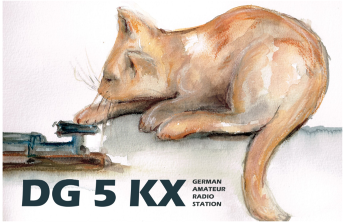 Primary Image for DG5KX