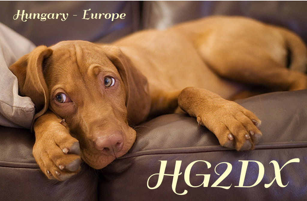 Primary Image for HG2DX