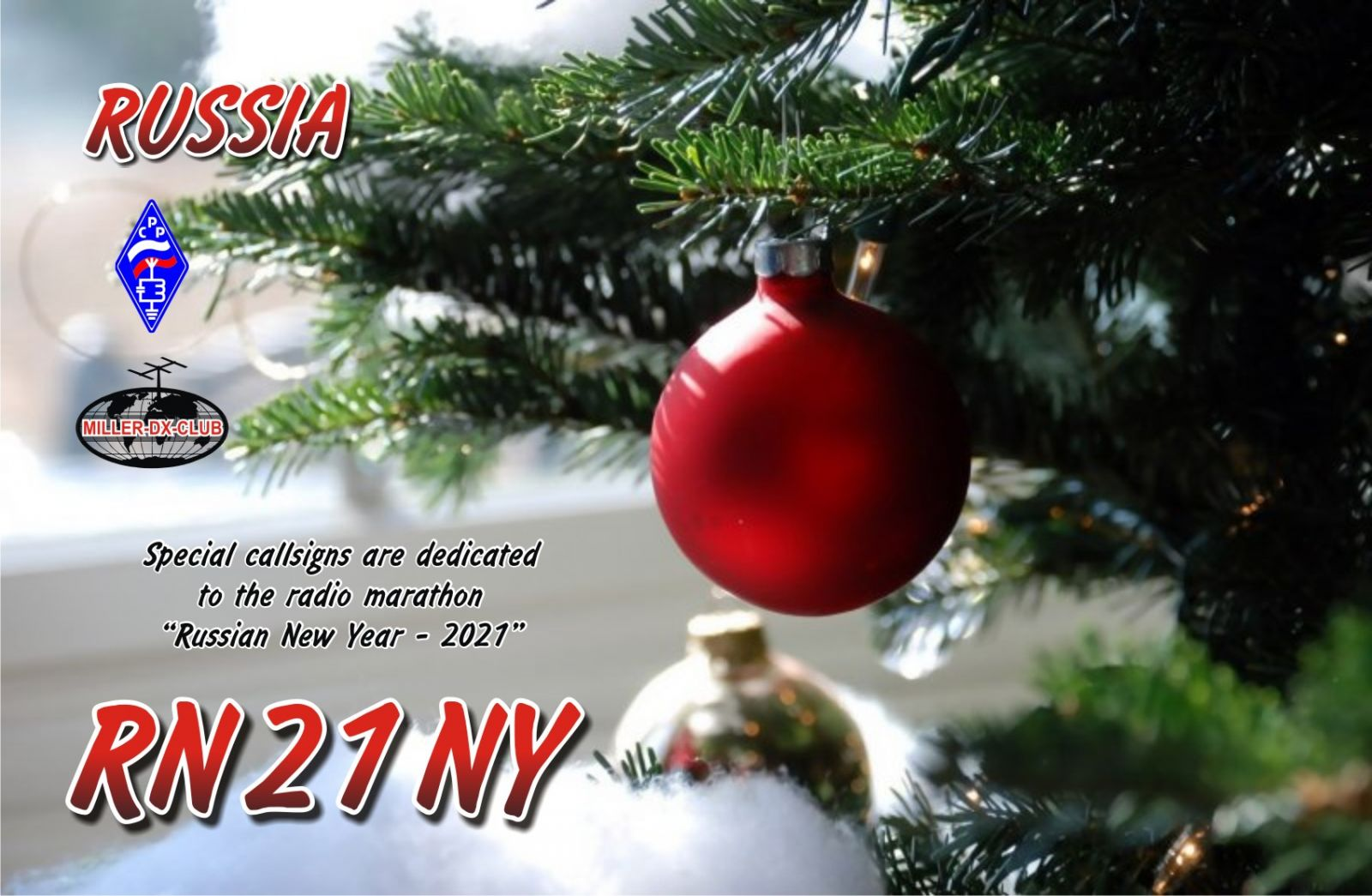 Primary Image for RN21NY