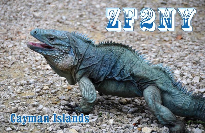 Primary Image for ZF2NY